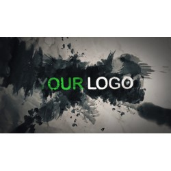 Animated logo entrance with...